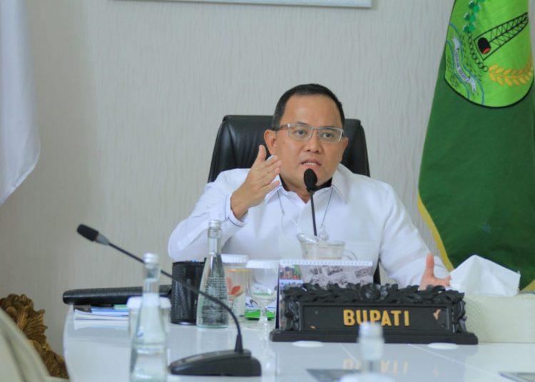 Bupati Muba, Dodi Reza Alex saat menjadi narasumber pada Musi Banyuasin Environment Webinar Forum 2021 secara virtual, Senin (28/6/2021). (fornews.co/humas pemkab muba)
