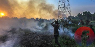 Dua orang anak ikut membantu petugas Manggala Agni memadamkan api di kawasan Desa Semambu, Kabupaten Ogan Ilir, Sabtu (31/7/2021) kemarin. (fornews.co/mushaful imam)